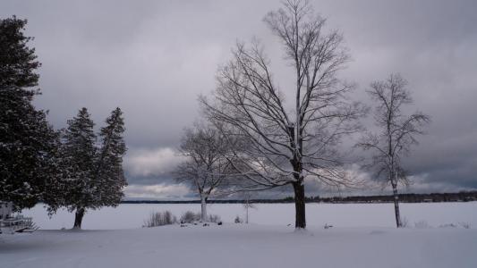Near Gravenhurst, Ontario # 9